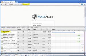 Network - перехватываем параметры запросов в Google Chrome