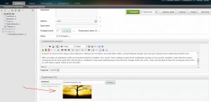 Создание сайта на MODX Evolution - TV параметры